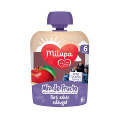 Mix de fructe - mere, banane, coacaze negre si afine, 6+ luni, 90 g, Milupa
