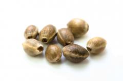 Canepa ecologica seminte nedecorticate, 500g, Crud si Sanatos