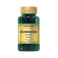 Echinacea Extract 500mg, 30 capsule, Cosmo Pharm