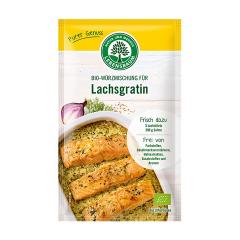 Amestec de condimente BIO pentru somon gratinat, 20g, Lebensbaum