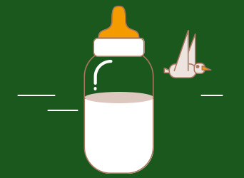 Yuga Bottle